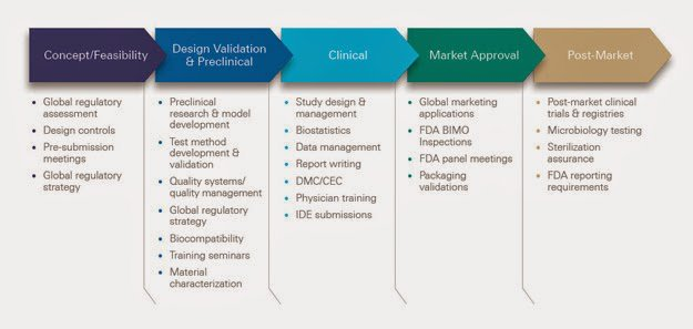Medical Device Development: Thinking Globally, Acting Locally