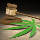 2018-bl-thumb-fda-back-cannabis
