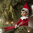 2019-nl-bl-thumb-elf-on-shelf