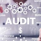 2020-bl-remote-audits_132x132
