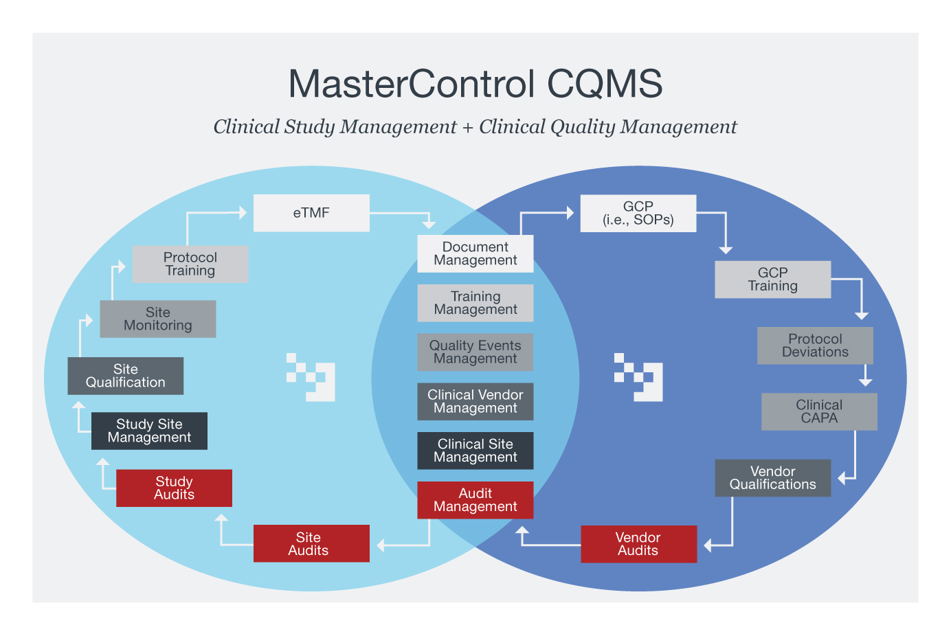 Clinical Software Process Diagram